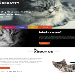 Purrkatty best free WordPress theme