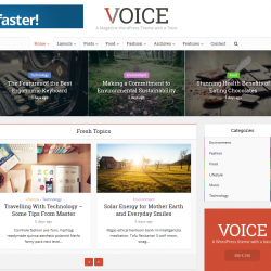 Voice Affiliate Marketing WordPress theme