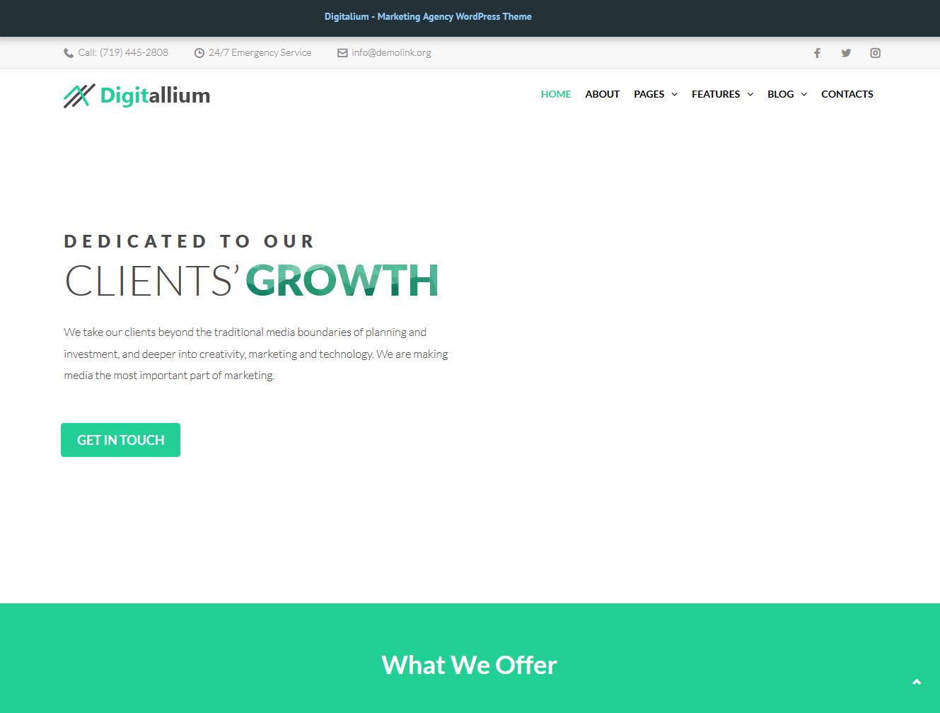 Digitalium Affiliate Marketing WordPress theme